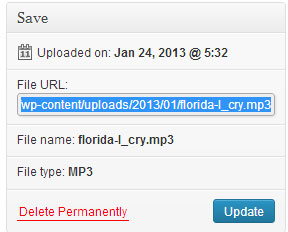 screenshot showing the mp3 audio file uploader option in wordpress