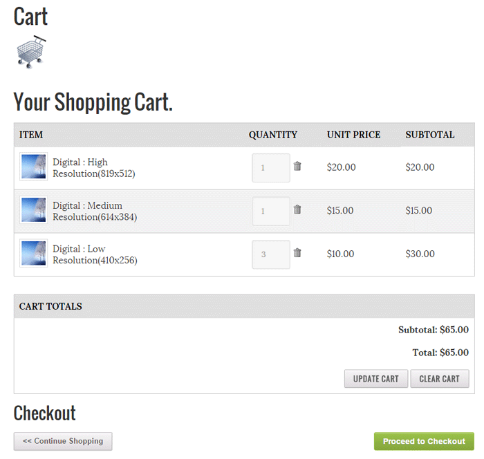 screenshot showing photo seller shopping cart checkout