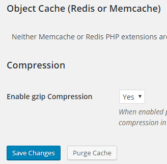 screenshot of gzip compression in the simple cache plugin settings